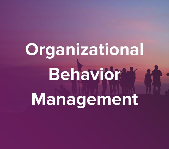 OBM Consulting & Training