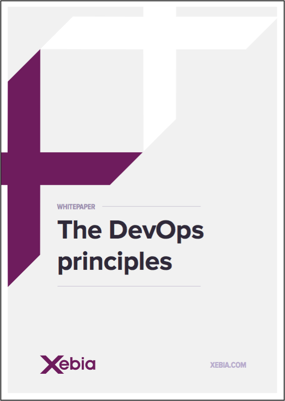 Framed-6 DevOps principles1-1.png