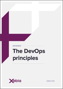 Framed-6 DevOps principles1-1.png