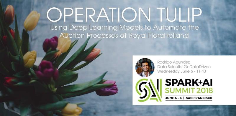 Operation-Tulip