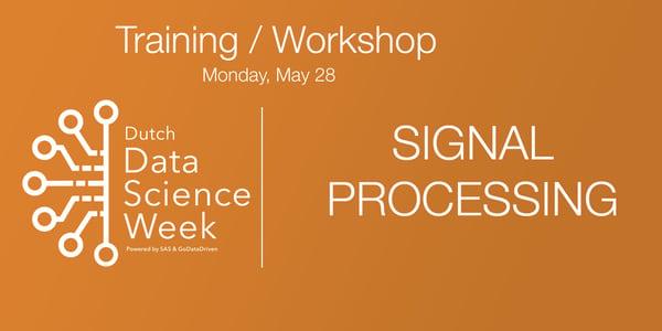 ddsw-training-signalprocessing
