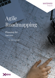 Whitepaper - Agile Roadmapping-thumbnail