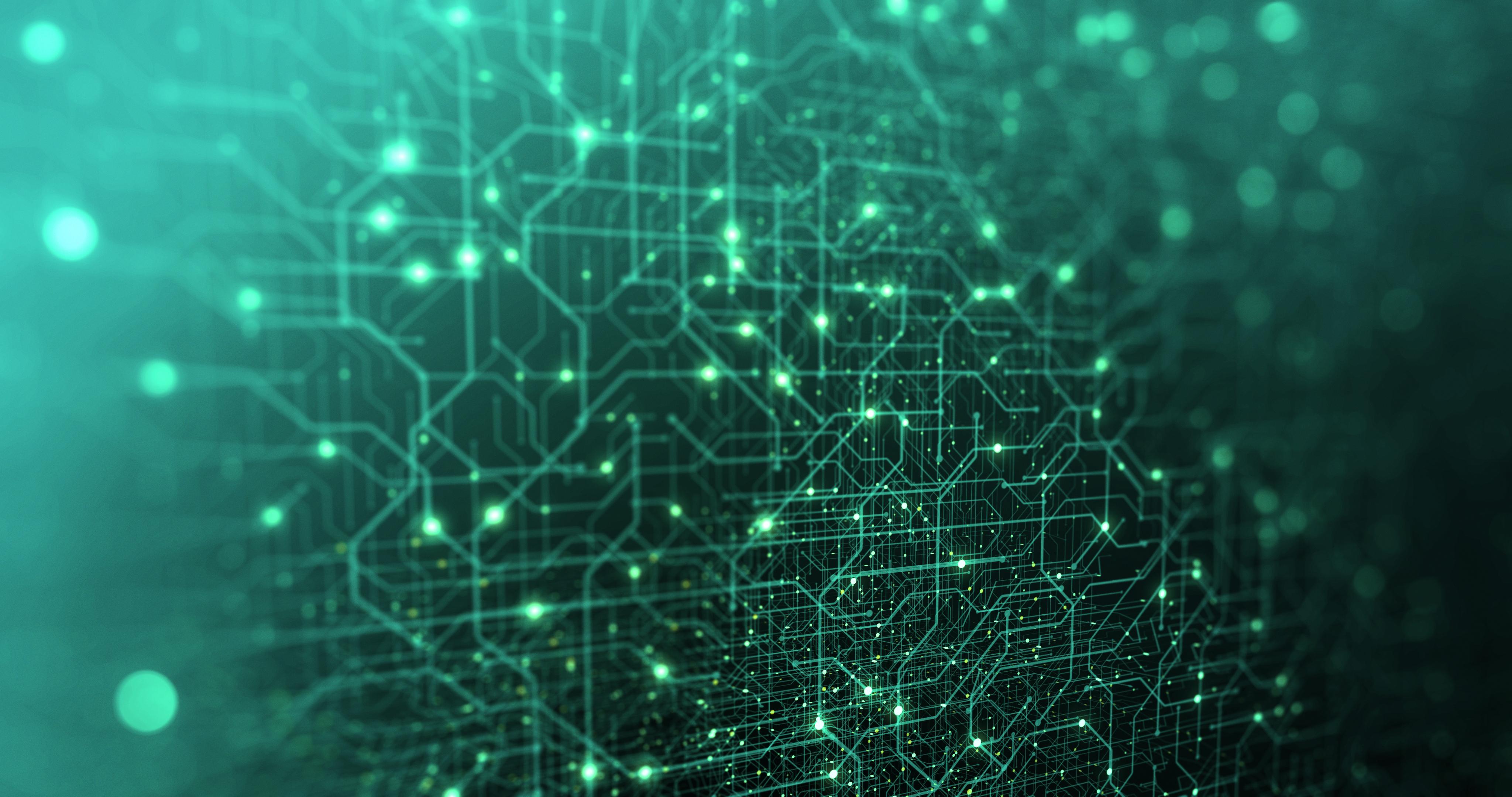 The Data Native Organization